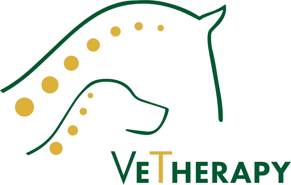 cropped-VeTherapy_Logo.png
